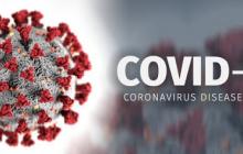 ۱۵ فوتی و شناسایی ۴۰۴ مورد مبتلا به کرونا ویروس در ۲۴ ساعت گذشته در استان مرکزی
