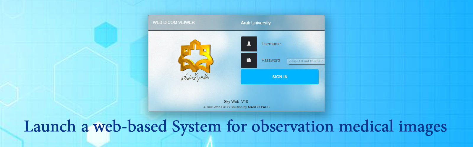 Launch a web-Based  system for observation Medical images